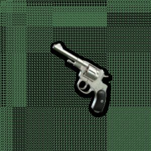 Skin d'arme: Silver Plate – R1895